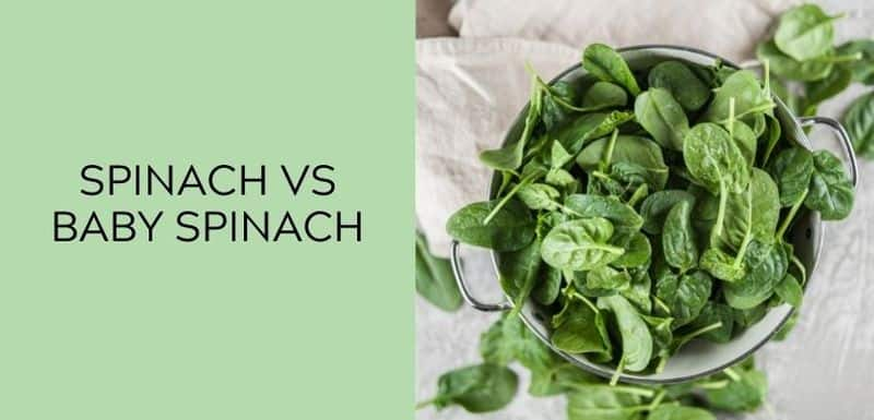 Spinach vs Baby Spinach