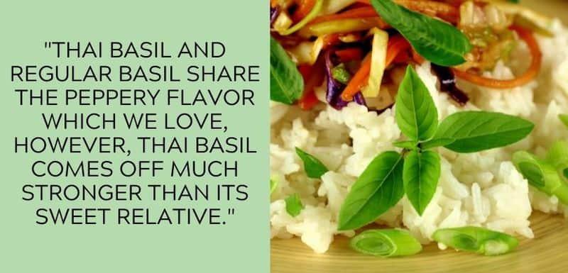 thai basil taste