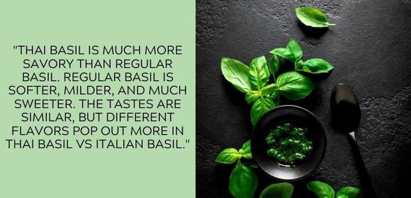 Thai basil vs Italian basil