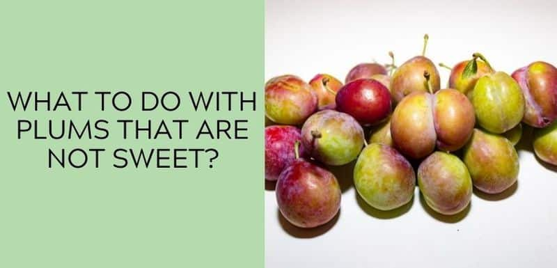 What to Do with Plums That Are Not Sweet?