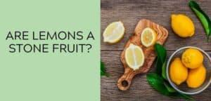 Are Lemons a Stone Fruit