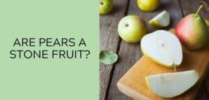 Are Pears a Stone Fruit