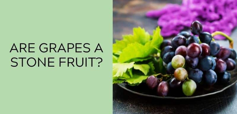 Are Grapes a Stone Fruit?