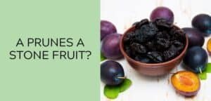 Are Prunes a Stone Fruit?