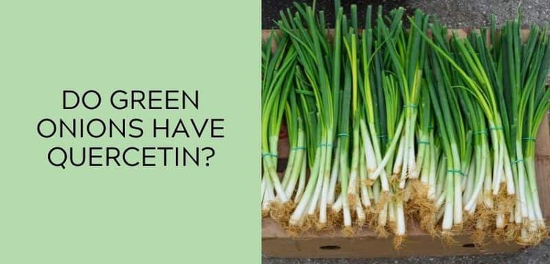 Do green onions have Quercetin?