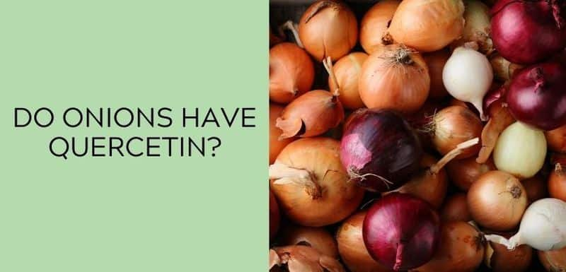 Do onions have Quercetin?