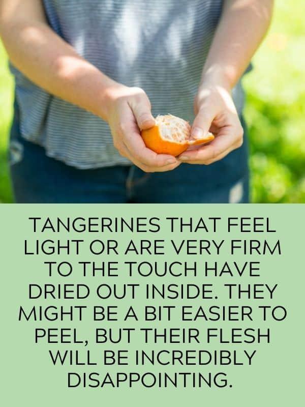 firm tangerine