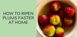How to Ripen Plums Faster at Home