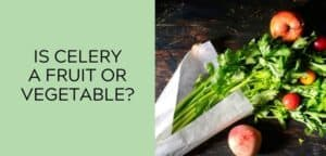 Is Celery a Fruit or Vegetable?